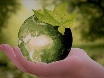 Nuevas tecnologías al servicio de la red ambiental
